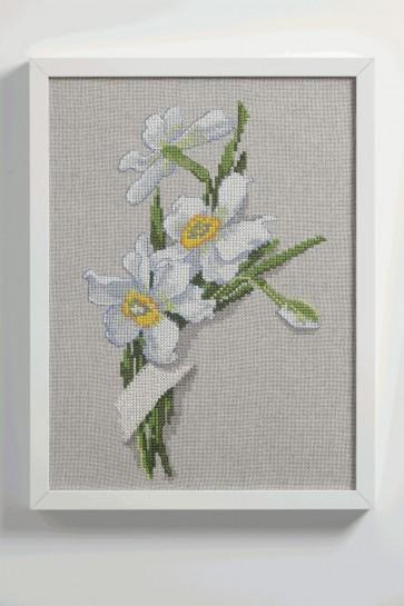 White Narcissus - 9240000-02108