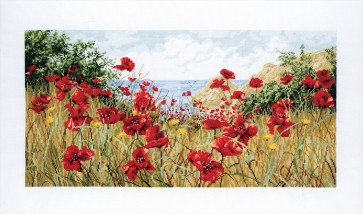 Clifftop Poppies - APC940