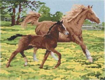 Horses - MR7005