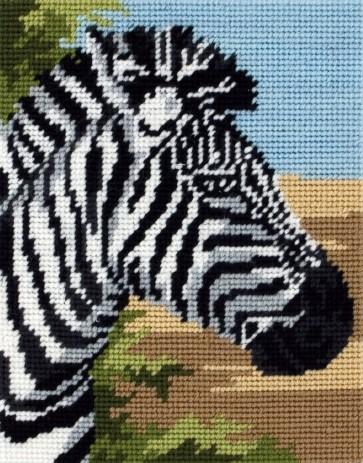 Zebra - MR944