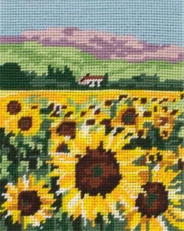 Sunflower Field - MR948