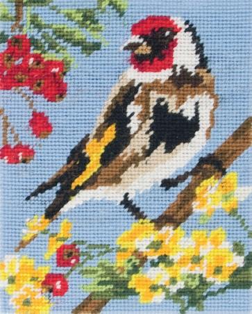Goldfinch - MR955