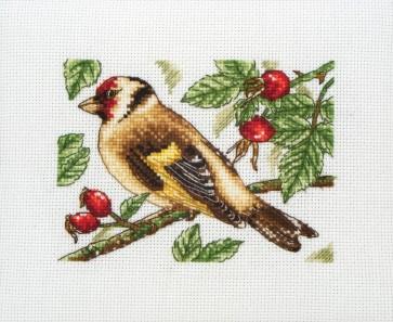 Goldfinch - PCE205