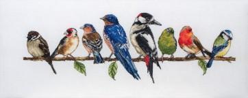 Birds In A Row - PCE727
