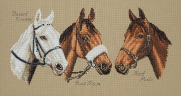 Anchor Cross Stitch Kit - Horse Kits - Three Champions