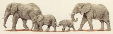 Anchor Cross Stitch Kit - Animal Kits - Elephant Stroll