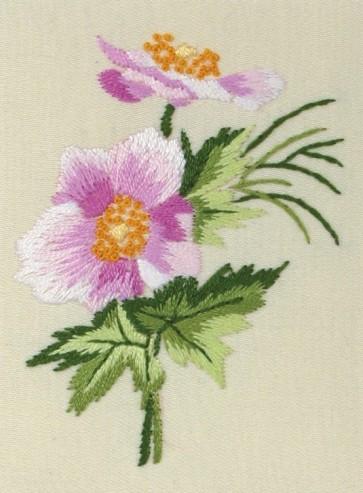 Oriental Anemone - PE125