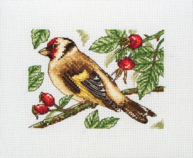 Anchor Cross Stitch Kit Bird Kits Goldfinch
