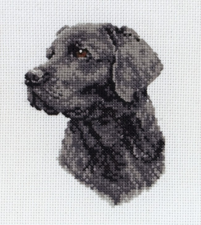 Anchor Cross Stitch Kit Dog Kits Black Labrador