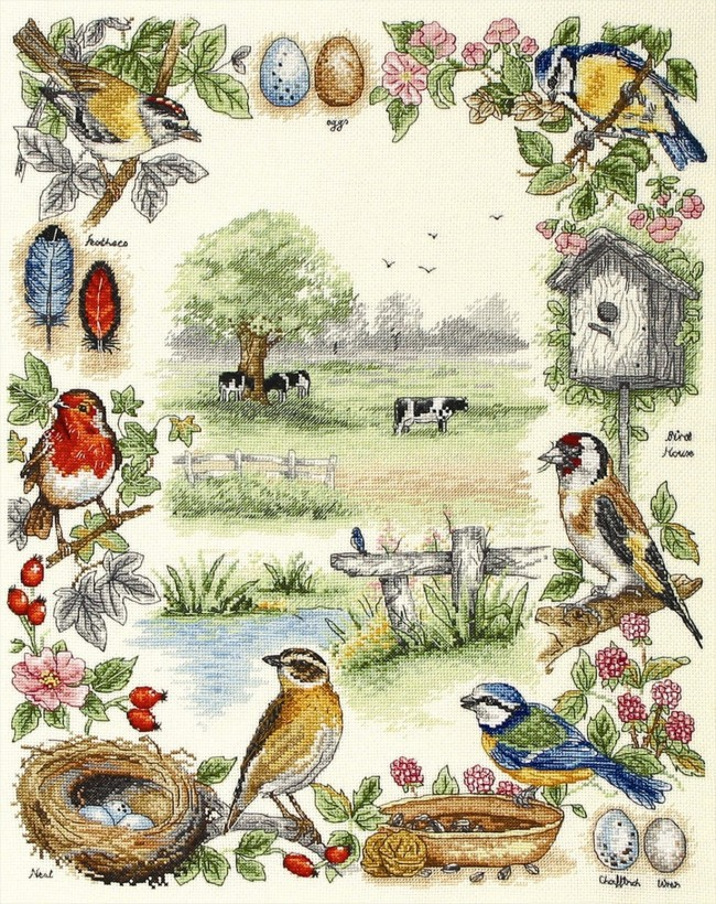 Anchor Cross Stitch Kit Bird Kits Birds Sampler